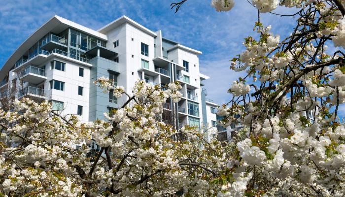 Lägenheter på våren