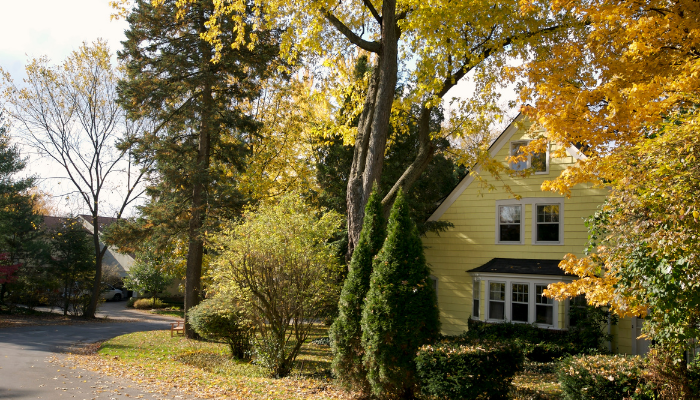 Hus på hösten